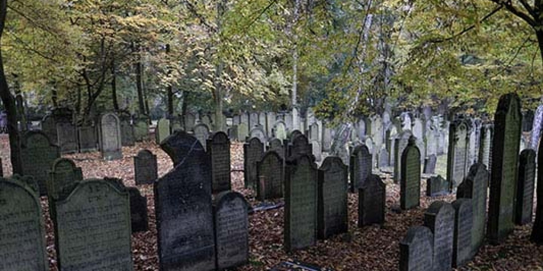 Friedhof Hamburg Altona